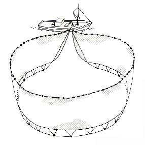Pesca con redes